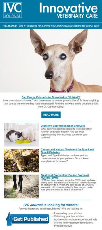 veterinary_medicine_newsletter
