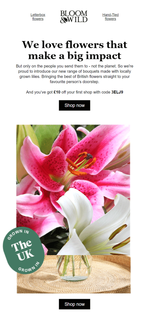 personalized_welcome_email_desing_example